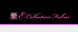 E-Collection Fukui