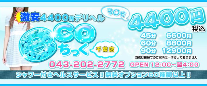 激安4400円 ecoちっく千葉店