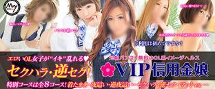 VIP信用金娘(ミクシーグループ)